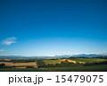 収穫前 丘 畑の写真 15479075