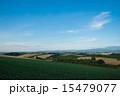 収穫前 畑 夏の写真 15479077