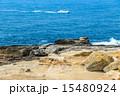 浸食 南紀白浜 岩の写真 15480924