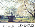 淡い 公園 風景の写真 15484782