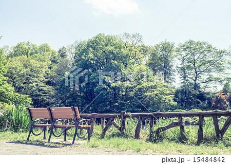 背景素材 ベンチのある風景 15484842