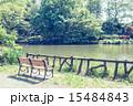 池 善福寺公園 公園の写真 15484843