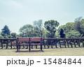 善福寺公園 公園 春の写真 15484844
