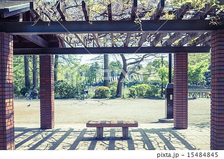 背景素材 ベンチのある風景 15484845