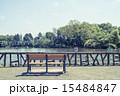 池 善福寺公園 ベンチの写真 15484847
