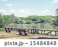 池 善福寺公園 公園の写真 15484848