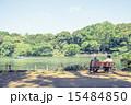 池 善福寺公園 公園の写真 15484850