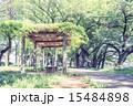 杉並区 ベンチ 公園の写真 15484898