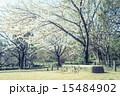 北の丸公園 公園 春の写真 15484902