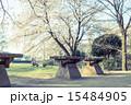 国分寺市 ベンチ 公園の写真 15484905