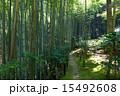 新緑の滝口寺 15492608