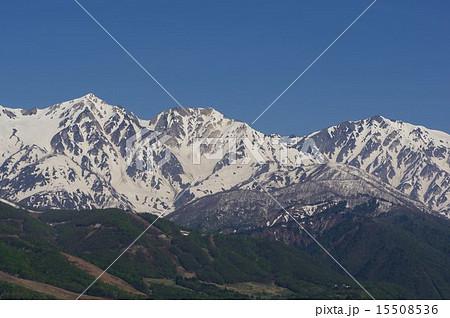 白馬三山(白馬鑓ヶ岳・杓子岳・白馬岳)遠望 15508536