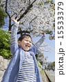 バンザイ 桜 子供の写真 15533379