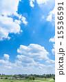 爽やかな大空 15536591