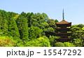 瑠璃光寺 瑠璃光寺五重塔 五重塔の写真 15547292