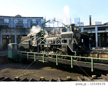 梅小路蒸気機関車館のC56 15549570