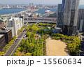神戸市役所 風景 街並みの写真 15560634