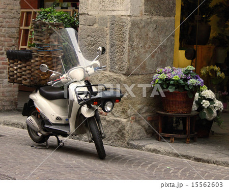 Transporting Flowers With Motor Cycle 15562603 Pixta
