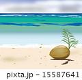 ヤシの実と砂浜 15587641