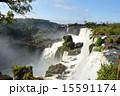 アルゼンチン イグアスの滝 イグアス国立公園の写真 15591174