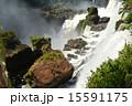 アルゼンチン イグアスの滝 イグアス国立公園の写真 15591175