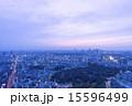 東京都市風景 六本木超高層ビルから望む東京街並全景 夕景 夜景 渋谷 新宿高層ビル 15596499