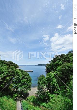 浄土ヶ浜(2012) 15599509