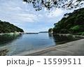 浄土ヶ浜(2012) 15599511