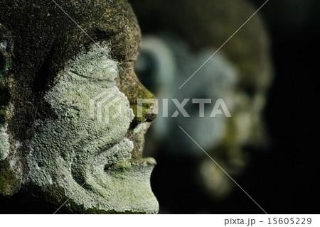 羅漢の横顔 15605229