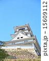 天守閣 高知城 重要文化財の写真 15609112