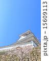 天守閣 高知城 重要文化財の写真 15609113