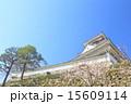 天守閣 高知城 重要文化財の写真 15609114