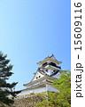 天守閣 高知城 重要文化財の写真 15609116