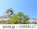 天守閣 高知城 重要文化財の写真 15609117