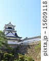 天守閣 高知城 重要文化財の写真 15609118