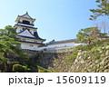 天守閣 高知城 重要文化財の写真 15609119