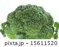 ブロッコリー 緑野菜 緑黄色野菜の写真 15611520