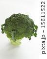ブロッコリー 緑野菜 緑黄色野菜の写真 15611522