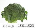 ブロッコリー 緑野菜 緑黄色野菜の写真 15611523
