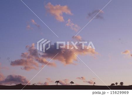 ナイタイ高原の夕焼け 15629969