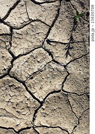 cracked ground 15630706