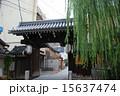 高麗門 さらば垣 出口の柳の写真 15637474