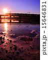 多摩川 シルエット 中央線の写真 15646831