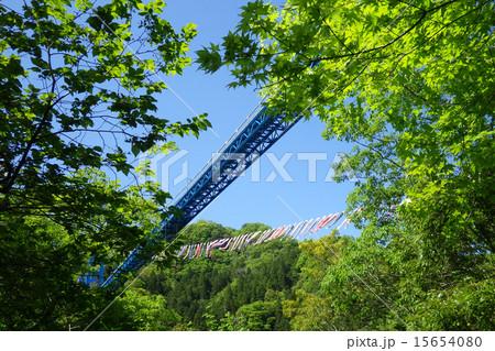 新緑の中から見上げる竜神大吊橋と鯉のぼり 15654080