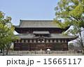 東寺 金堂 世界遺産の写真 15665117