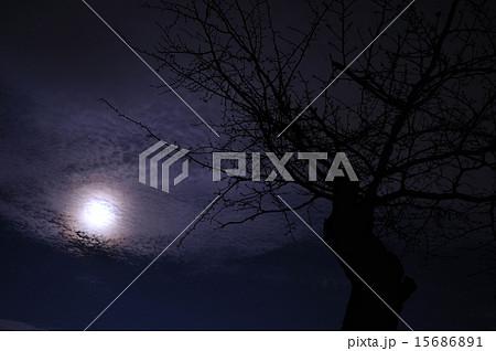 雲のかかった満月の夜 15686891