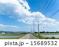 大空と一本道と水田 15689532