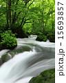 奥入瀬渓流 阿修羅の流れ 15693857