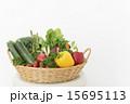 緑黄色野菜 15695113