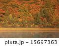 大沼 自然 秋の写真 15697363